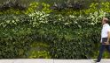 Artificial Tropical Green Wall
